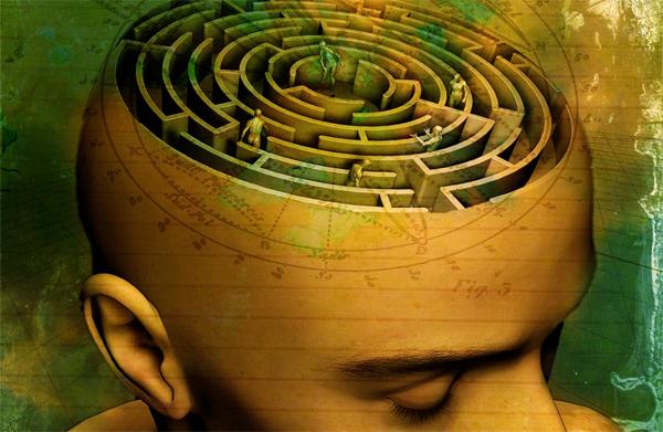 Brain, Brain, Brain..